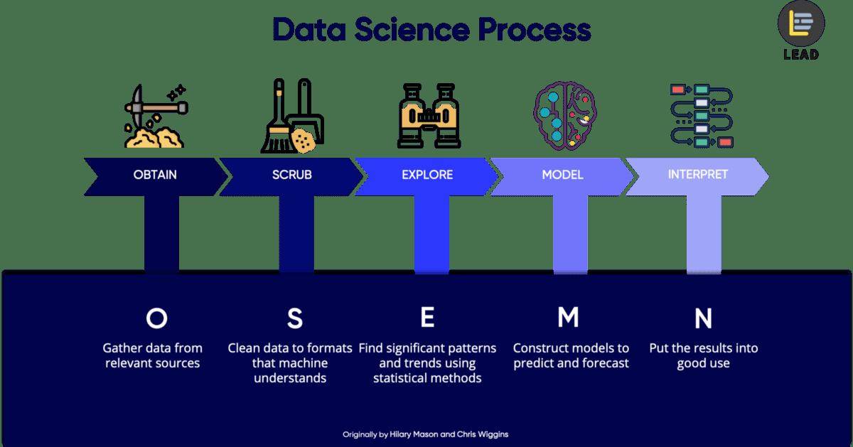 The Osemn Model